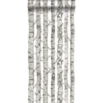 papier peint troncs de bouleau gris chaud clair de ESTA home