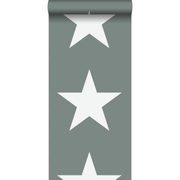 papier peint étoiles vert grisé de ESTA home