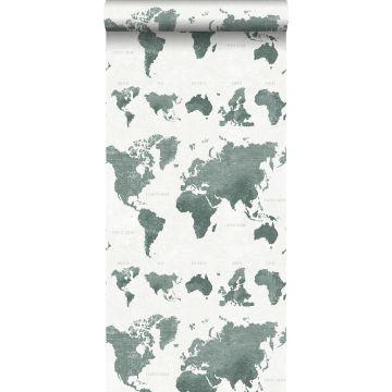 papier peint cartes du monde vert grisé de ESTA home