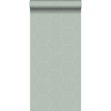 papier peint hexagone vert céladon de ESTA home