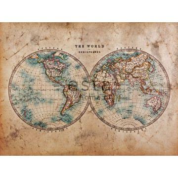 papier peint panoramique carte des deux hémisphères marron et bleu vert de ESTA home