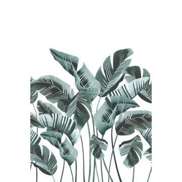 papier peint panoramique grandes feuilles de bananier bleu vert de ESTA home