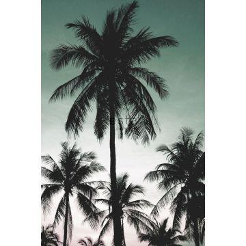 papier peint panoramique palmiers vert pétrole de ESTA home
