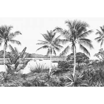 papier peint panoramique paysage tropical avec des palmiers noir et blanc de ESTA home