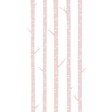 papier peint panoramique troncs de bouleau rose clair de ESTA home
