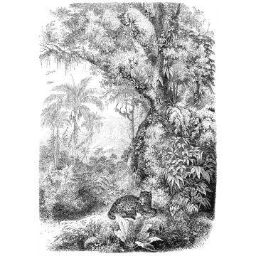 papier peint panoramique jungle noir et blanc de ESTA home