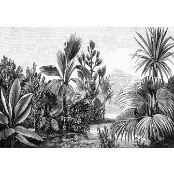 papier peint panoramique paysage tropical noir et blanc de ESTA home