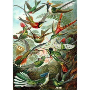 papier peint panoramique oiseaux vert jungle tropicale de ESTA home