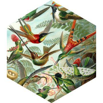 sticker mural oiseaux vert jungle tropicale de ESTA home
