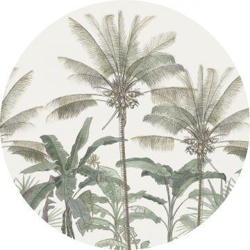 papier peint panoramique rond adhésif palmiers beige clair et vert grisé de ESTA home