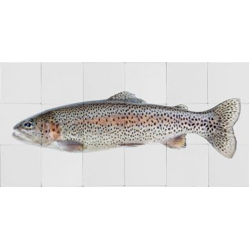 sticker mural poisson gris chaud et rose saumon de ESTA home