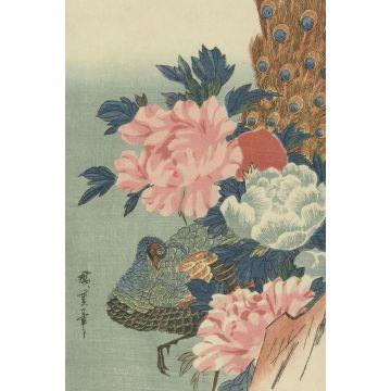 papier peint panoramique paon et pivoines vieux rose, vert et bleu de Origin