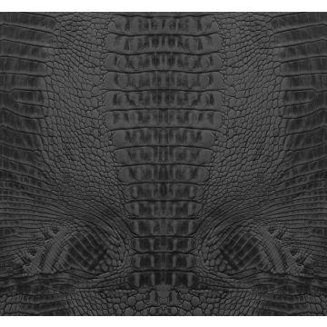 papier peint panoramique peau de crocodile noir de Origin